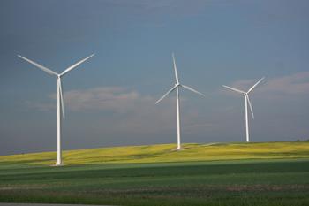 St. Leon wind farm in southern Manitoba. Image credit: Bullfrog Power